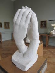 Rodin 7